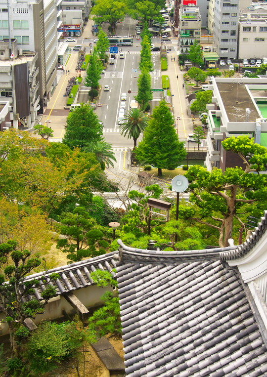 高知城と路面電車_f0266284_22514480.jpg
