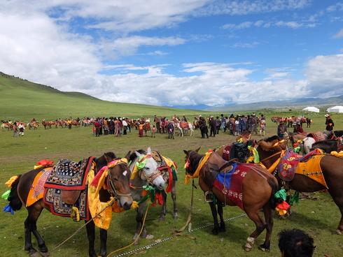 6日目:理塘(リタン) 鳥葬と競馬祭_a0207588_18444214.jpg