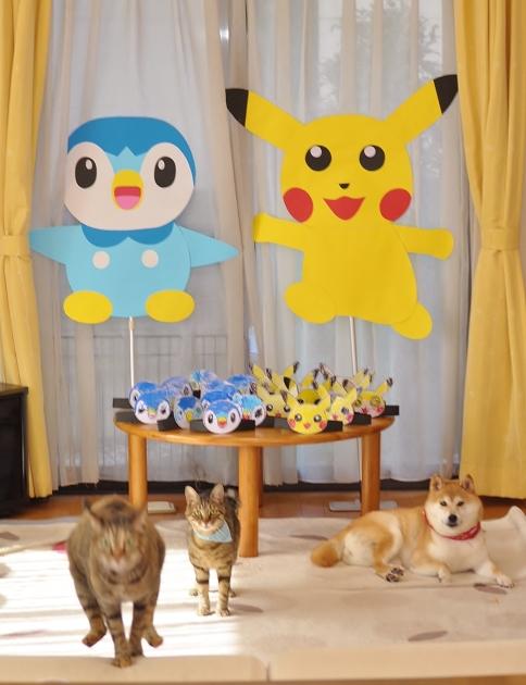 気まぐれ猫_a0126590_09300930.jpg