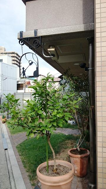 こんなところにパン屋さん!なS.KAGAWA_e0167593_0544319.jpg
