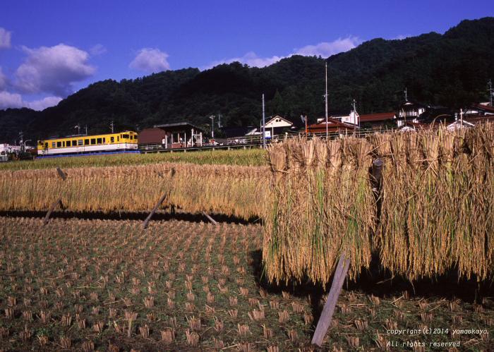 収穫の後で ~追憶の可部線_d0309612_03940100.jpg