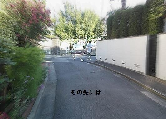 b0226221_18471832.jpg