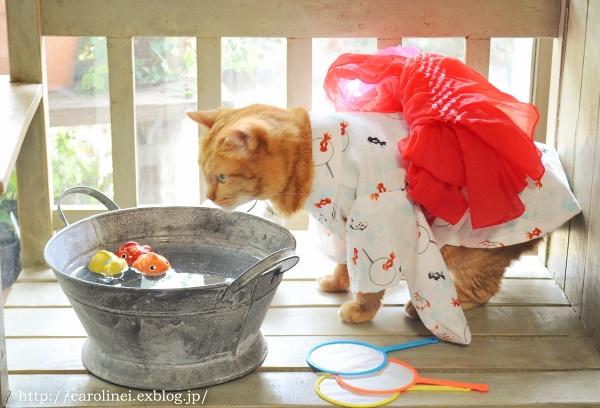 ピックアップブロガー更新/キュートなスイーツ&ハンドメイド作品、猫写真が人気!_f0357923_15272655.jpg