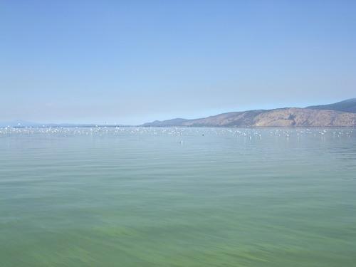 アッパークラマス湖へ_e0295926_107383.jpg