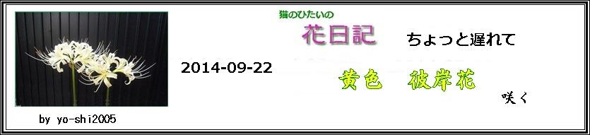 e0033229_1854831.jpg