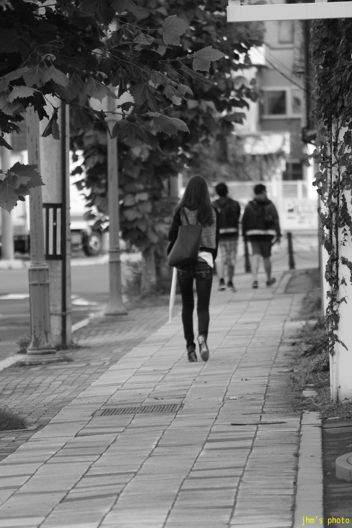 函館ランダム写真14_a0158797_2344510.jpg