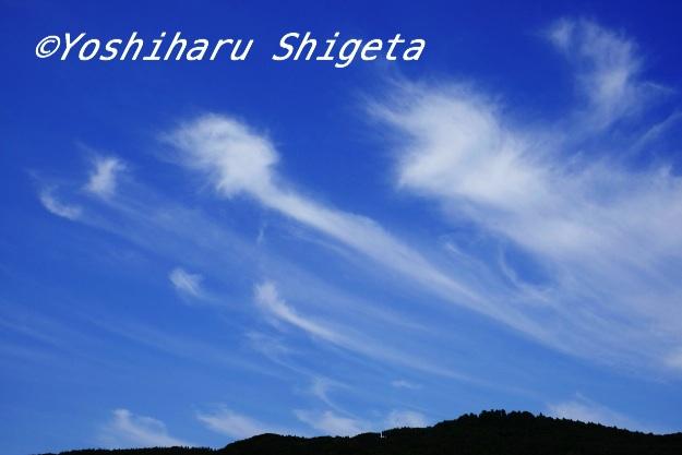〜天空高く〜_c0152400_16142653.jpg