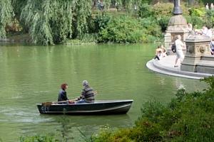 初秋のセントラルパークから、手漕ぎボートの湖_b0007805_11493230.jpg