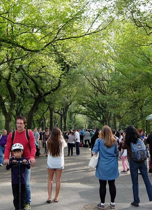 初秋のセントラルパークの巨大な並木道 The Mall_b0007805_21313067.jpg
