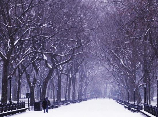 初秋のセントラルパークの巨大な並木道 The Mall_b0007805_21332783.jpg