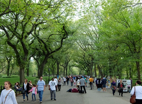 初秋のセントラルパークの巨大な並木道 The Mall_b0007805_2133847.jpg