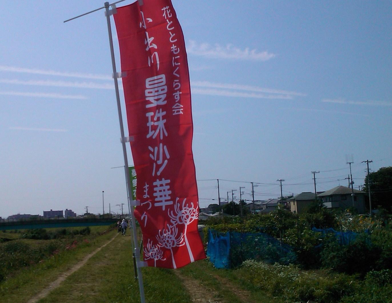 散歩途中で..曼珠沙華まつり_b0137932_1643571.jpg