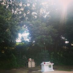 初めての『秋のお彼岸法要』_b0308135_15354298.jpg