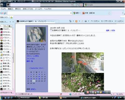 a0084343_1784187.jpg