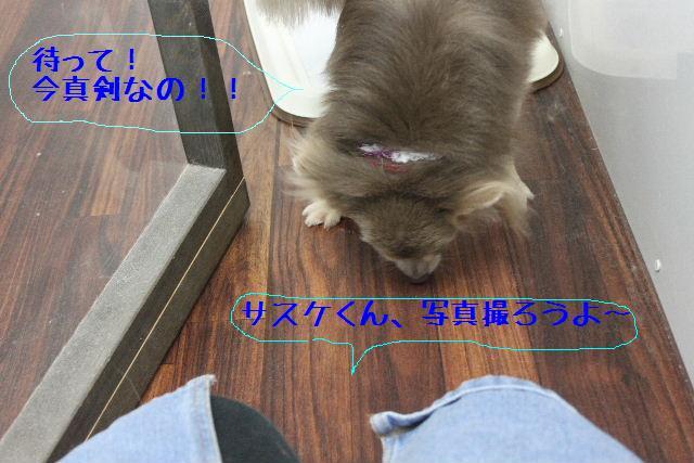 b0130018_16583218.jpg