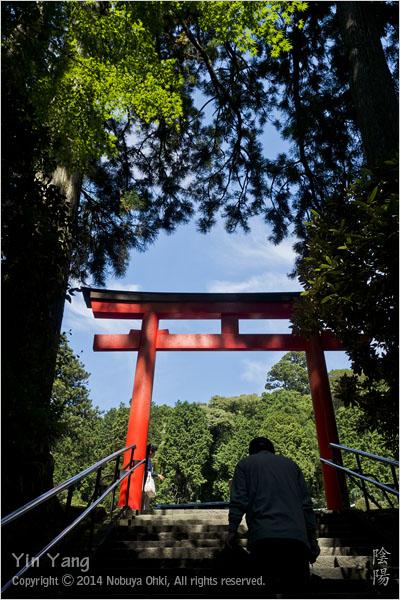 彼岸花と鳥居、神奈川_e0139738_12503654.jpg
