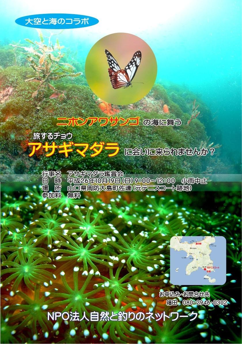 アサギマダラ&往還道_f0183846_19413110.jpg