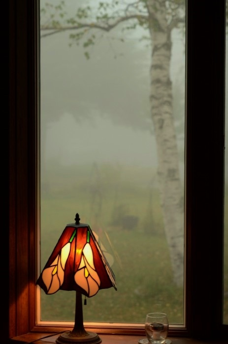 霧が_b0341869_16495114.jpg