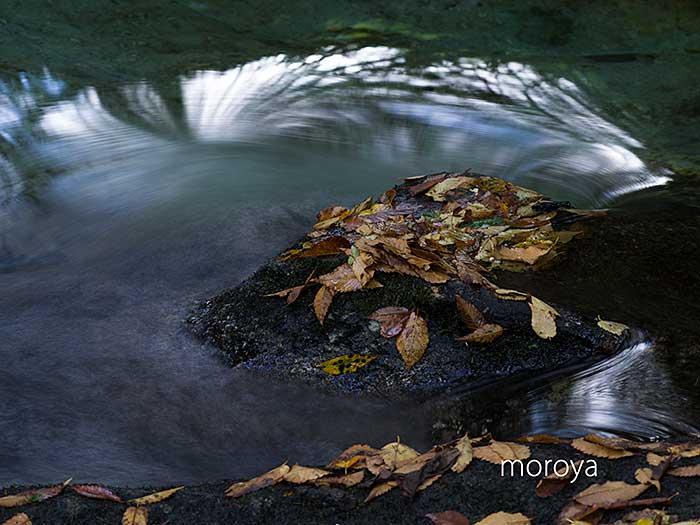 渓流も秋の気配_c0085877_07002062.jpg