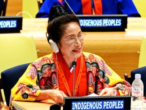 糸数議員、国連で演説 先住民族世界会議_f0150886_9255990.jpg