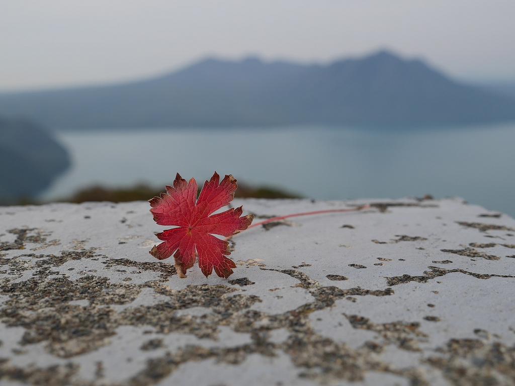 紋別岳、風不死岳と樽前山、9月24日-紋別岳編-_f0138096_2115049.jpg