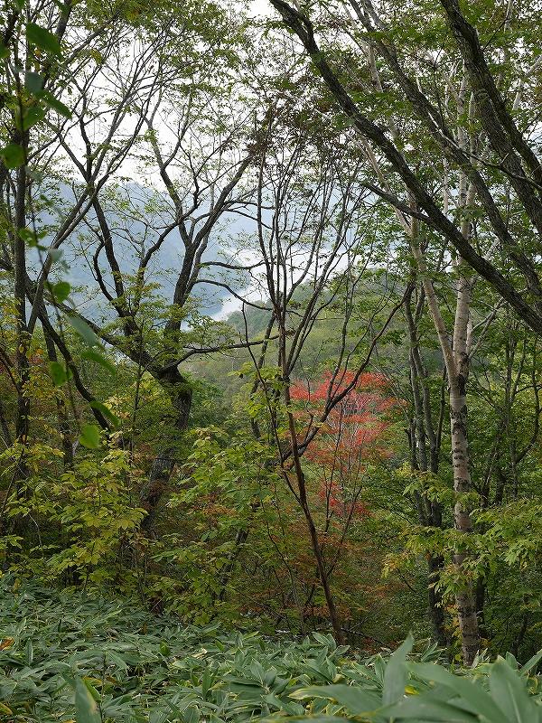 紋別岳、風不死岳と樽前山、9月24日-紋別岳編-_f0138096_212847.jpg