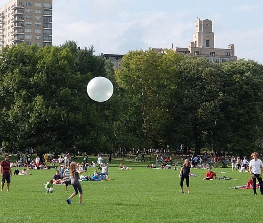 シープ・メドーで見かけた大きな半透明の白いプニプ二のボール_b0007805_840342.jpg