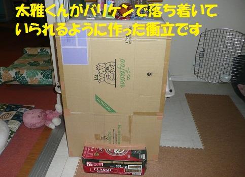 f0121712_1817412.jpg
