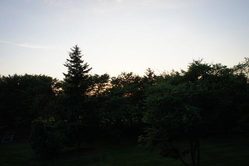 f0215714_17585916.jpg