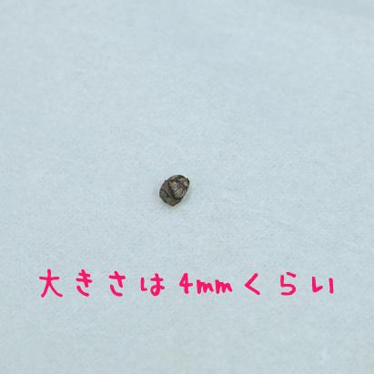 d0102523_1718381.jpg