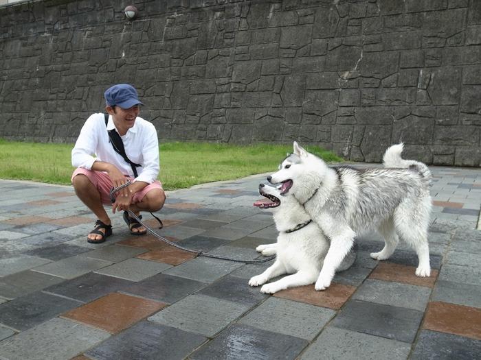 ようこそ! 宮崎へ (^o^)_c0049299_21502175.jpg