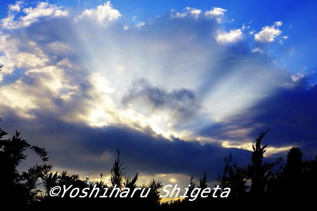 〜光輝く〜_c0152400_1732810.jpg