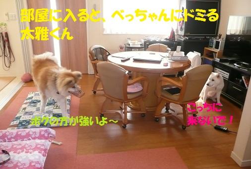 f0121712_22122183.jpg