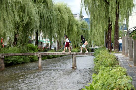 岡崎の白川散策_e0048413_21263512.jpg