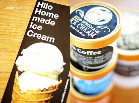 Hilo Homemade Ice Cream  ヒロ ハンドメイド アイスクリーム_e0253364_1013545.jpg