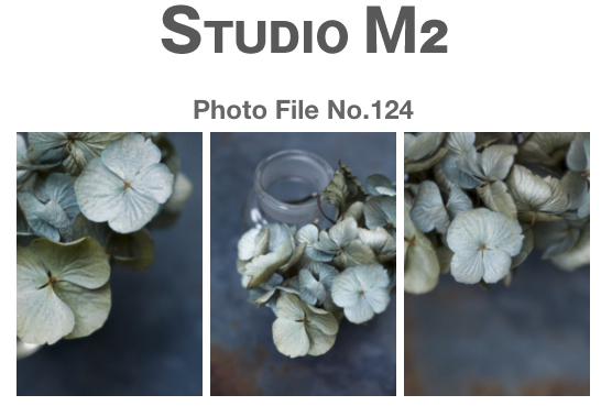 STUDIO M2 PhotoFile No.124「アジサイ Hazy SunLight」_a0002672_9165845.jpg