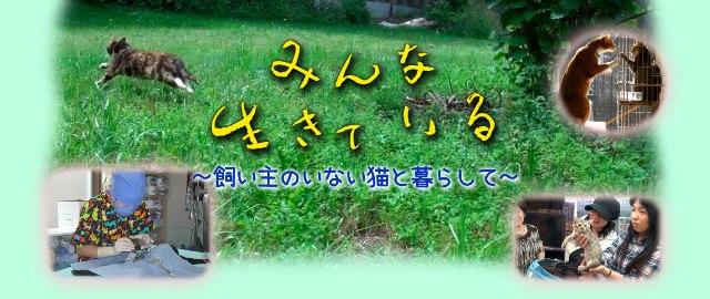 b0344486_23311880.jpg