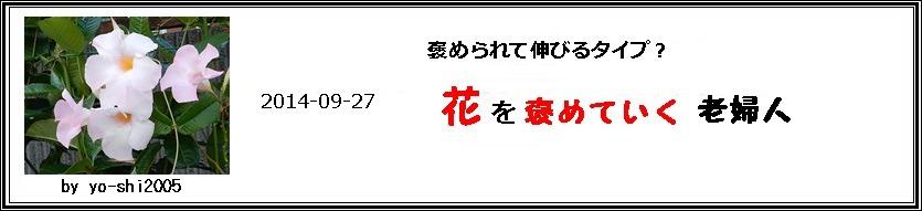 e0033229_17155182.jpg