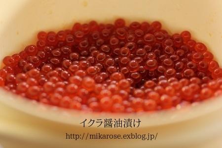 秋のお仕事 ~醤油いくら~_a0264538_18491986.jpg