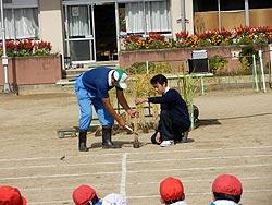 稲刈り体験(月光原小・西根小)_d0247484_13515725.jpg