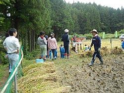 稲刈り体験(月光原小・西根小)_d0247484_13591946.jpg