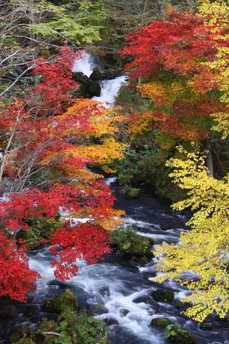 新そばの季節がやってきた 9月28日_f0113639_18332843.jpg