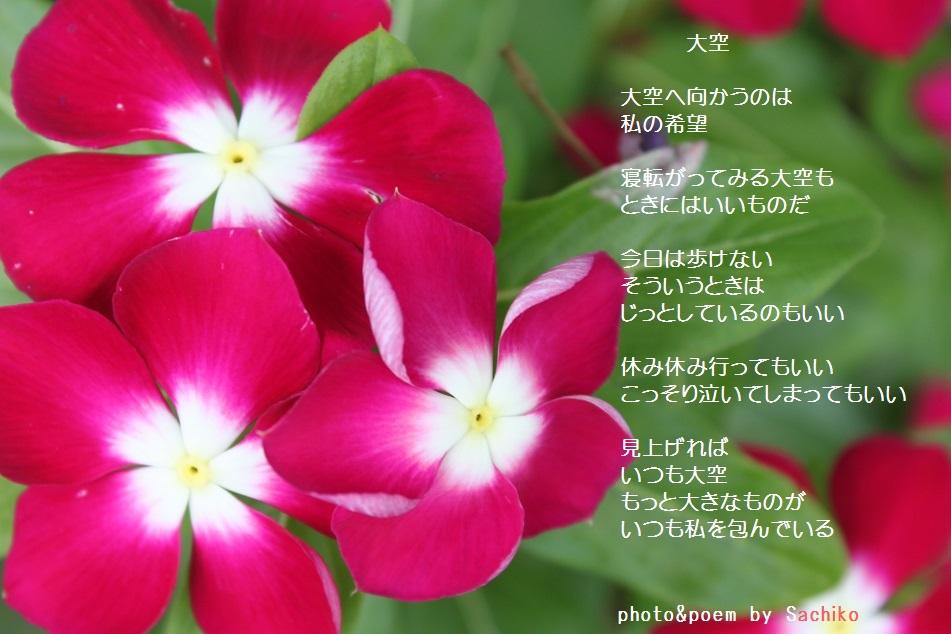 f0351844_09083943.jpg