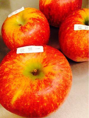 りんご煮ましたー_c0195151_15303850.jpg