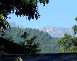 山のようす_d0050155_859569.jpg