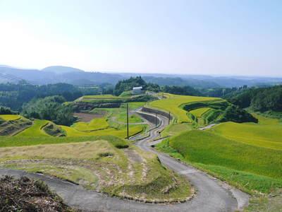 菊池水源棚田米 清らかな水と元気な土で育てた美味い米!まもなく稲刈りです!!_a0254656_17114756.jpg