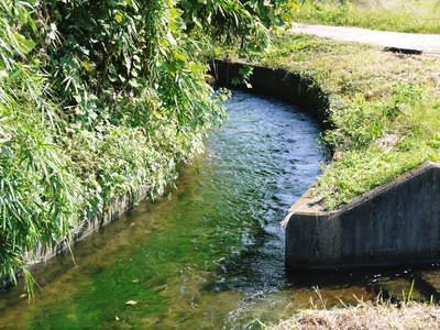 菊池水源棚田米 清らかな水と元気な土で育てた美味い米!まもなく稲刈りです!!_a0254656_17274192.jpg