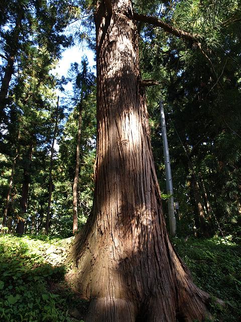 岩木山神社 (9/22)_b0006870_2395298.jpg