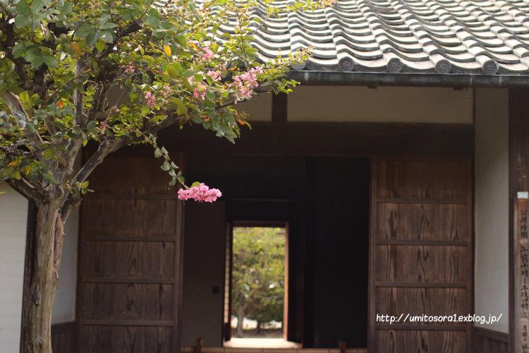 伊勢志摩への旅 *松阪を歩く_b0324291_11461339.jpg
