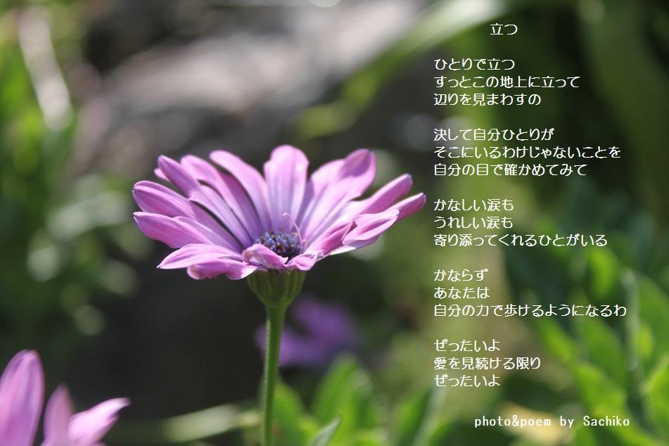 f0351844_13473911.jpg